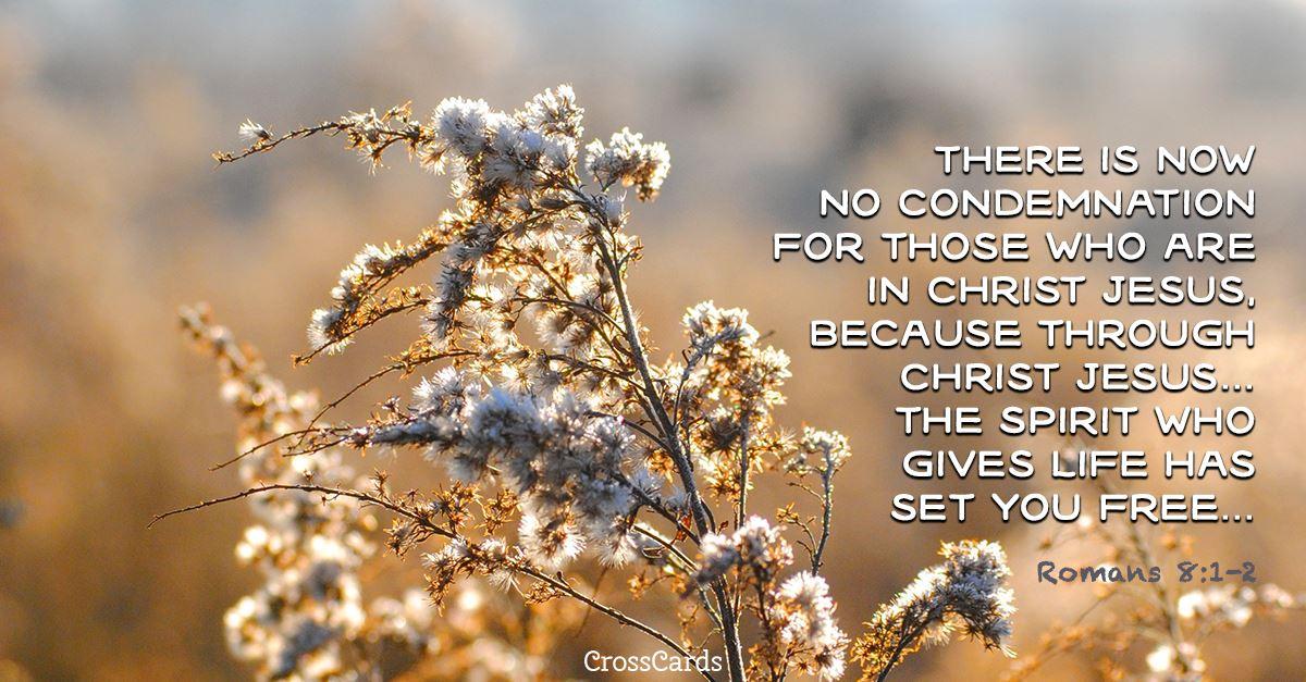 Romans 8:1-2 ecard, online card