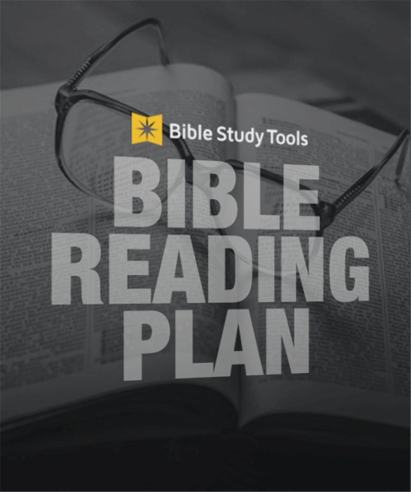 A One Year Bible Reading Plan Printable Download Free