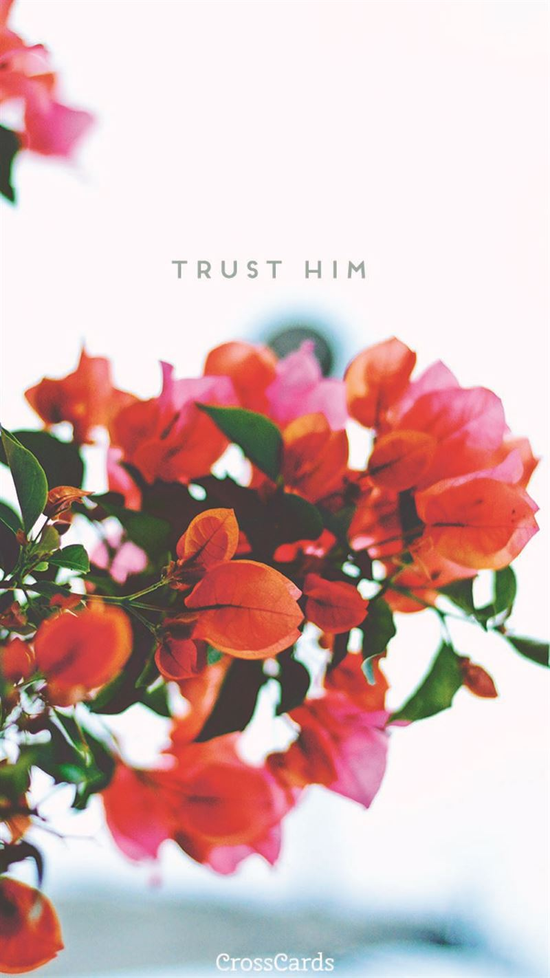 Trust Him mobile phone wallpaper