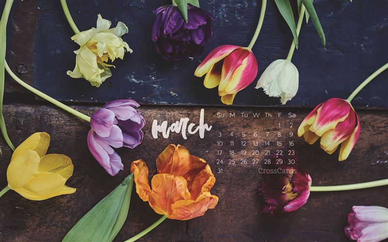 March 2019 - Flowers mobile phone wallpaper