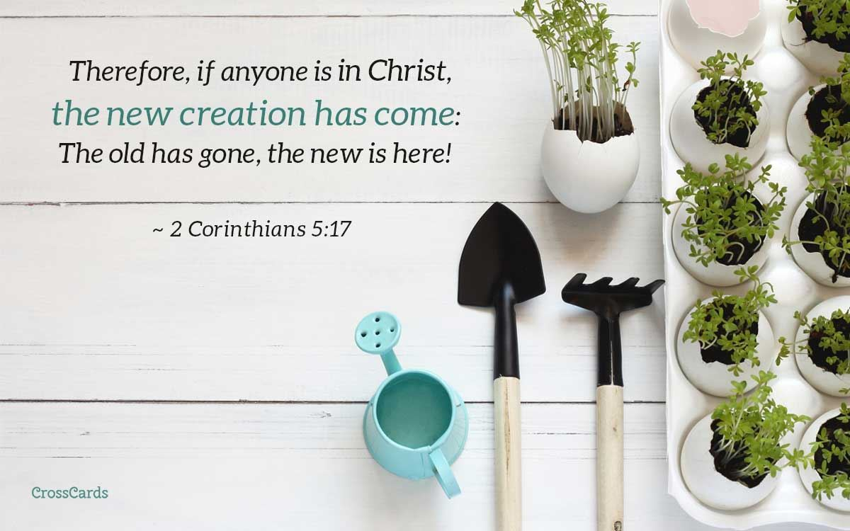 The New Creation Has Come - 2 Corinthians 5:17 ecard, online card