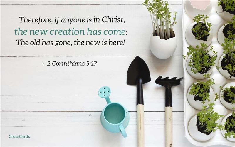The New Creation Has Come - 2 Corinthians 5:17 mobile phone wallpaper