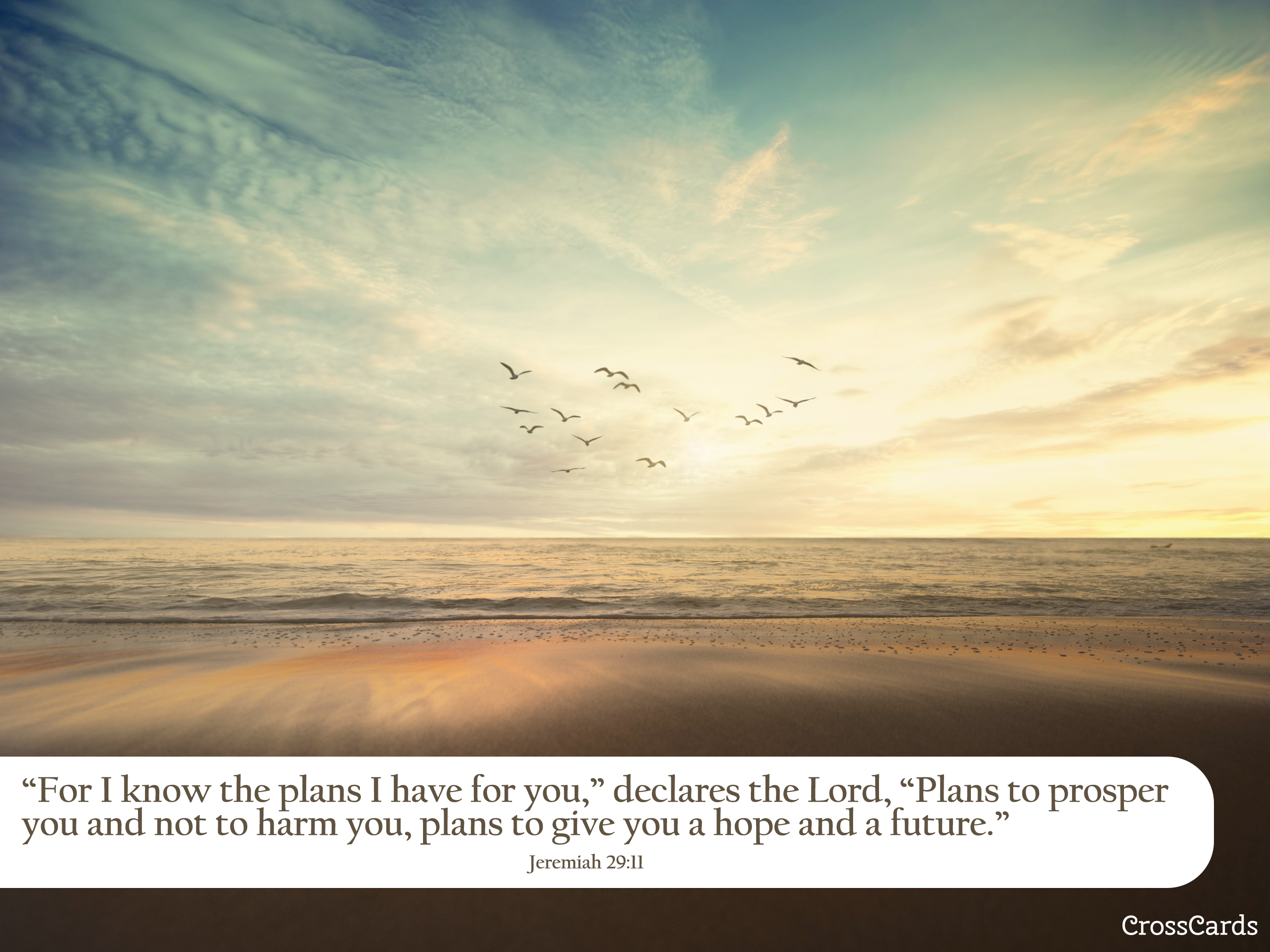 Jeremiah 29 11 A Hope And A Future Bible Verses And Scripture Wallpaper For Phone Or Computer