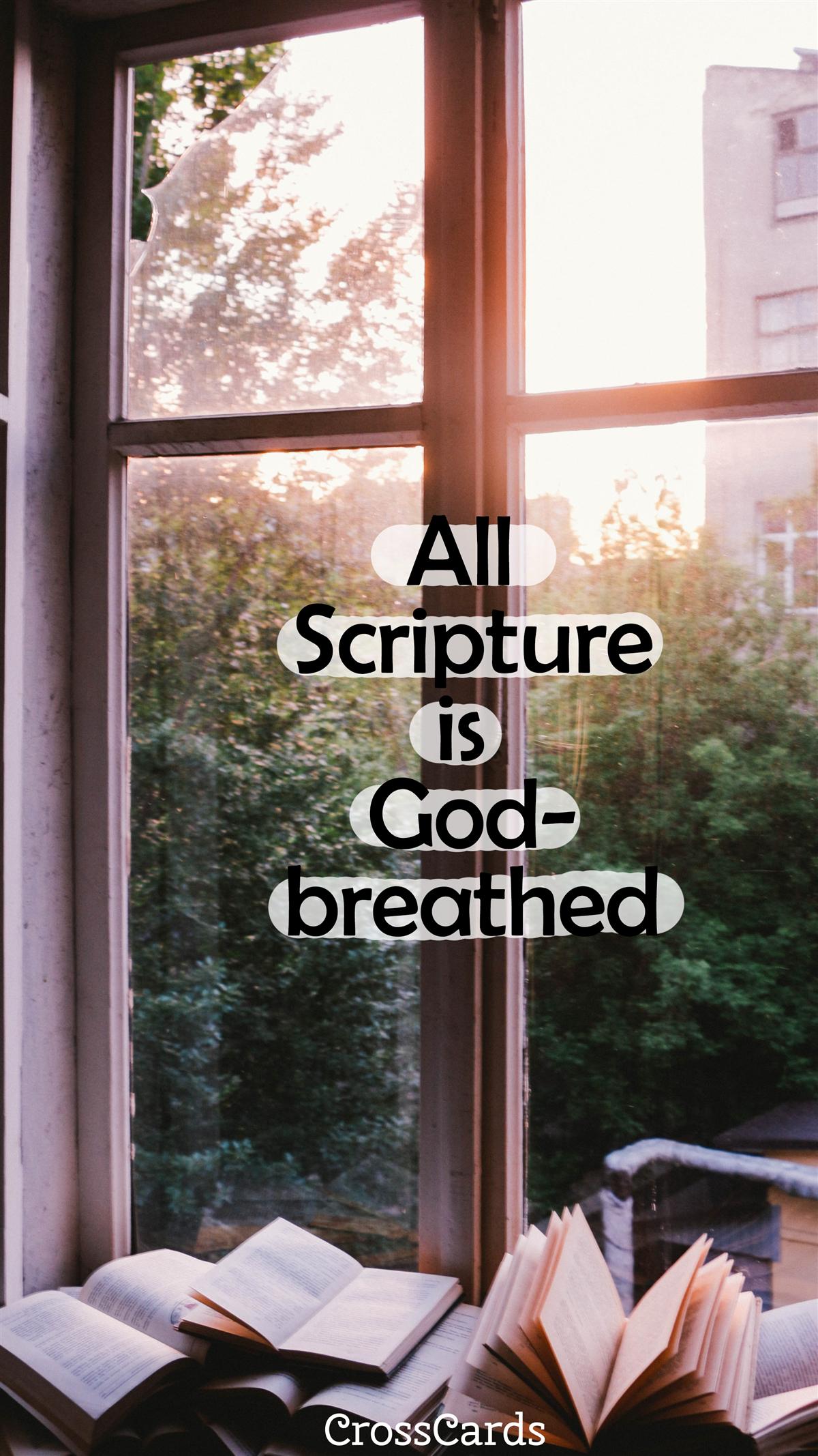 2 Timothy 3:16 ecard, online card