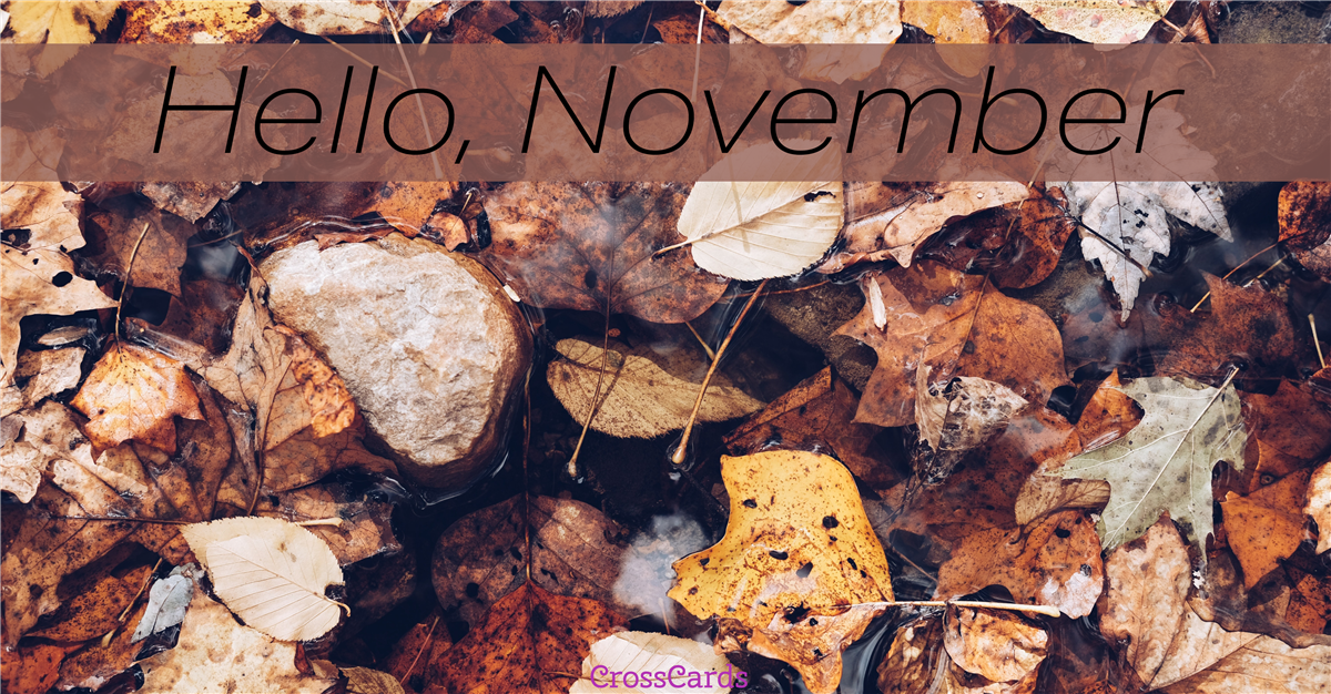 Hello November!  ecard, online card