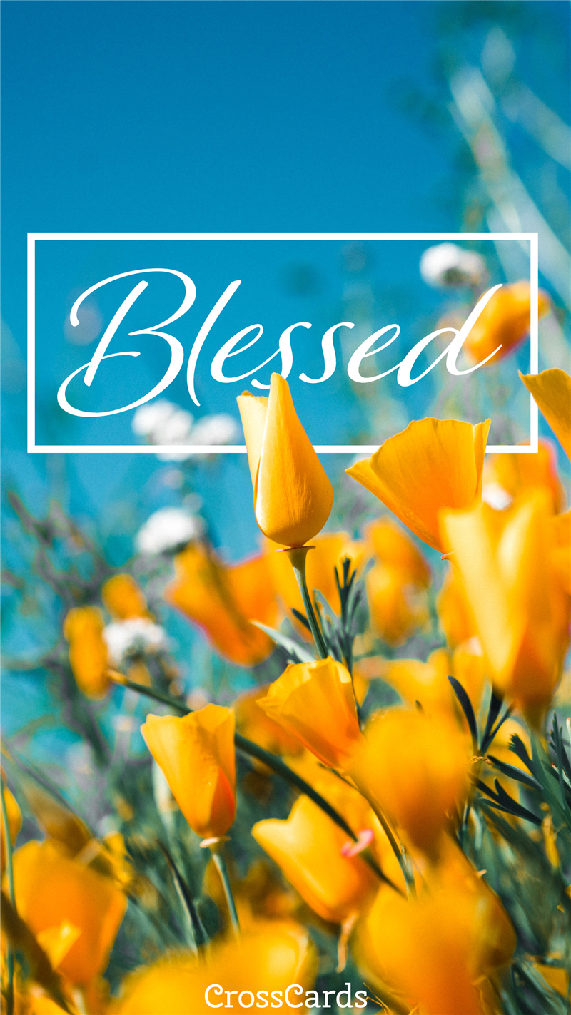 Blessed wallpaper mobile phone wallpaper