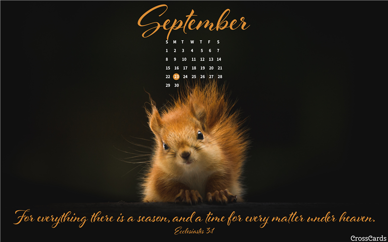 September 2019 - For Everything There is a Season mobile phone wallpaper