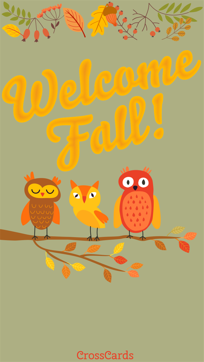 Welcome Fall Owls! mobile phone wallpaper