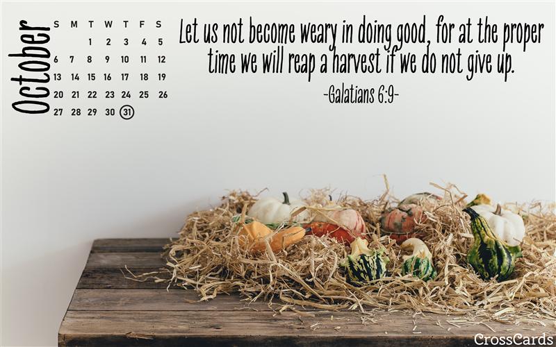 October 2019 - Galatians 6:9 mobile phone wallpaper