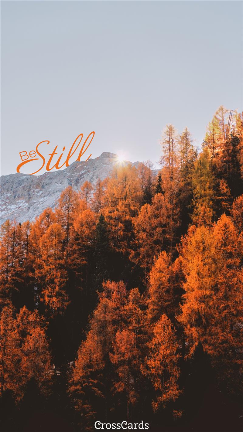 Be Still Fall Leaves mobile phone wallpaper