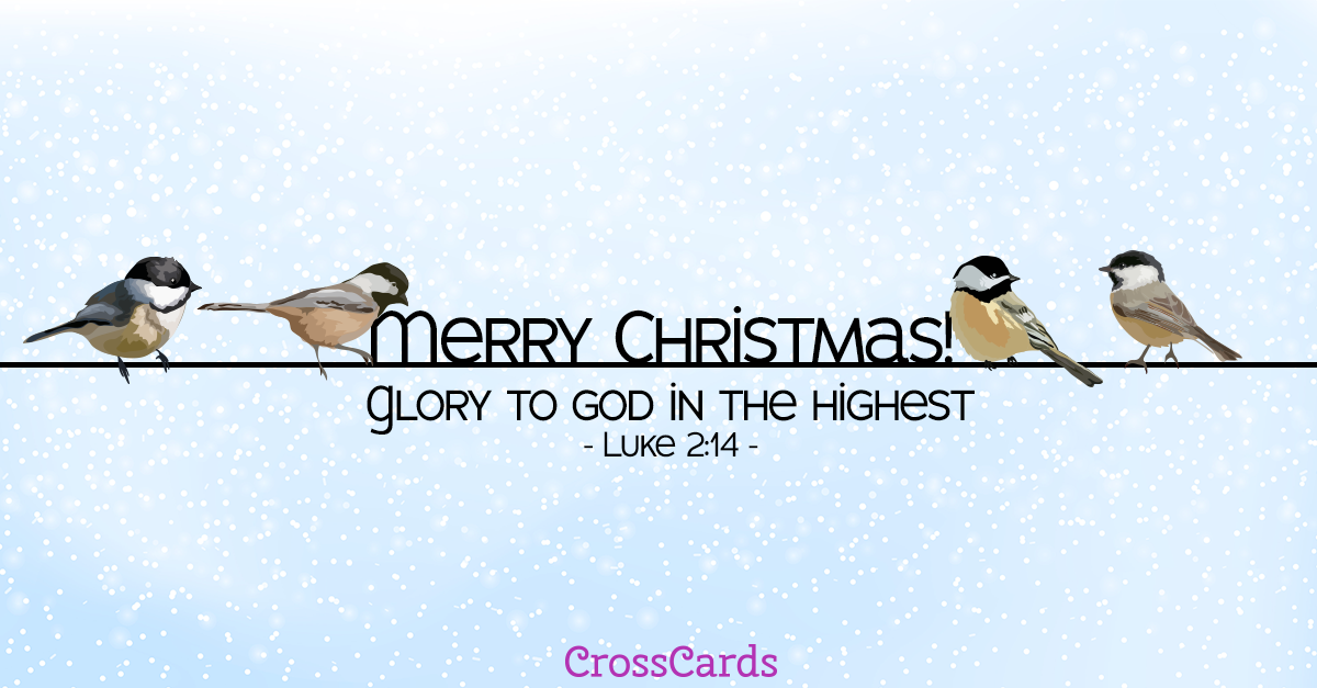 Merry Christmas Birds! ecard, online card