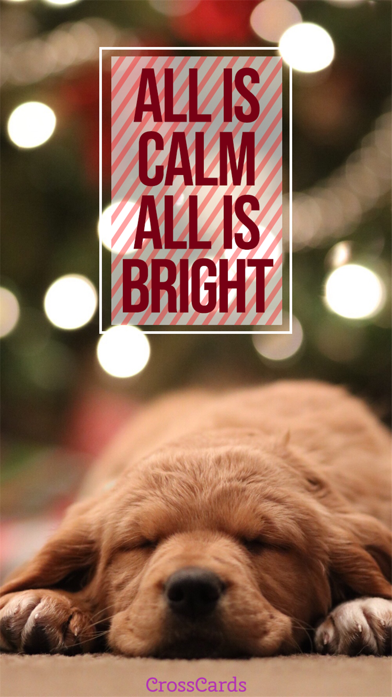 All is Calm, All is Bright mobile phone wallpaper