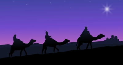 Did the Magi Really See a Star?