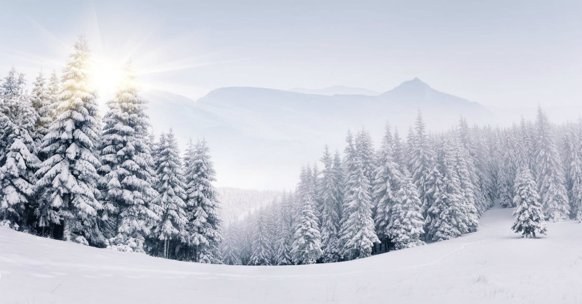 I Have No Idea Where God Keeps the Snow