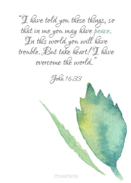 Take Heart! I Have Overcome the World!