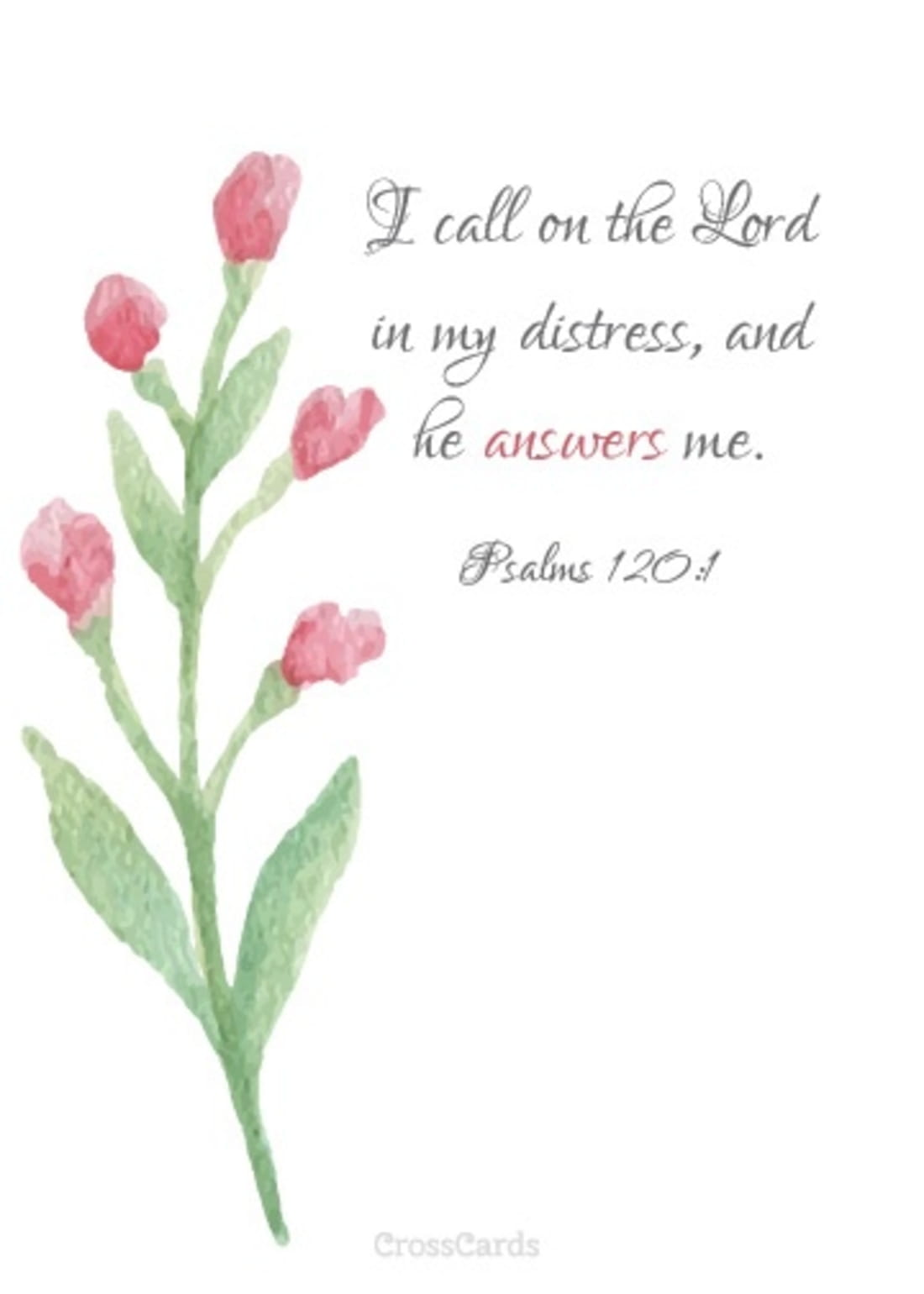 I Call on the Lord in My Distress and He Answers Me