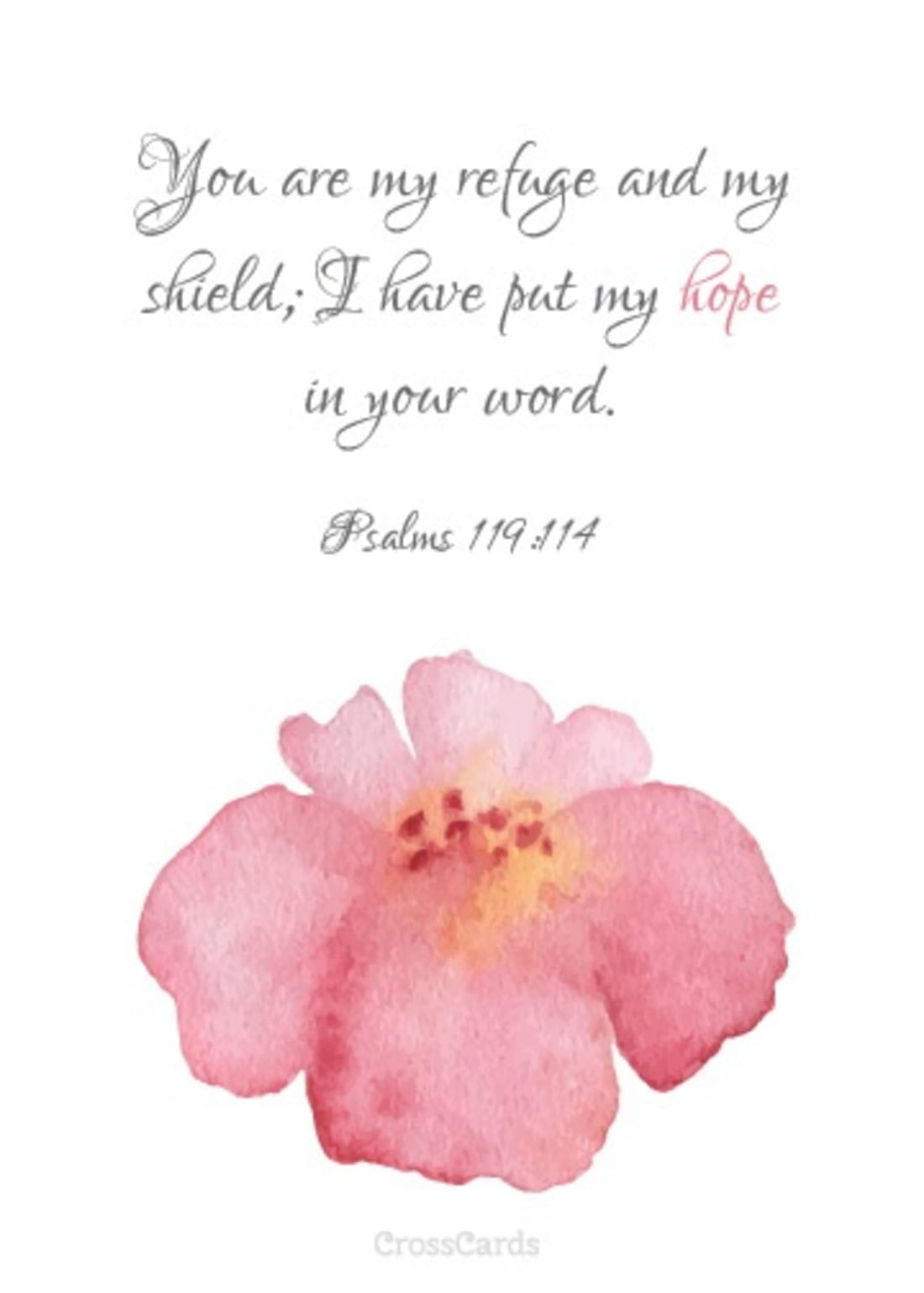 I Put My Hope in Your Word