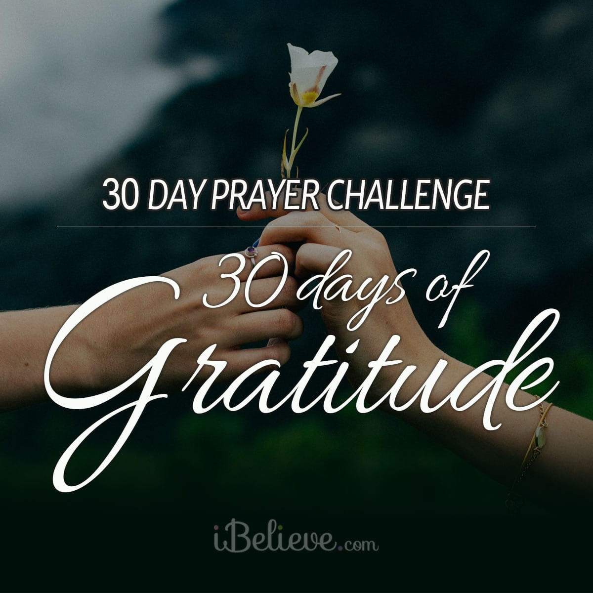 gratitude-prayer-challenge-square