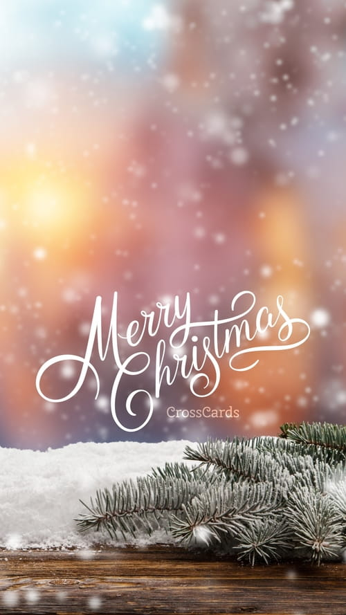 merry christmas to you phone wallpaper and mobile background