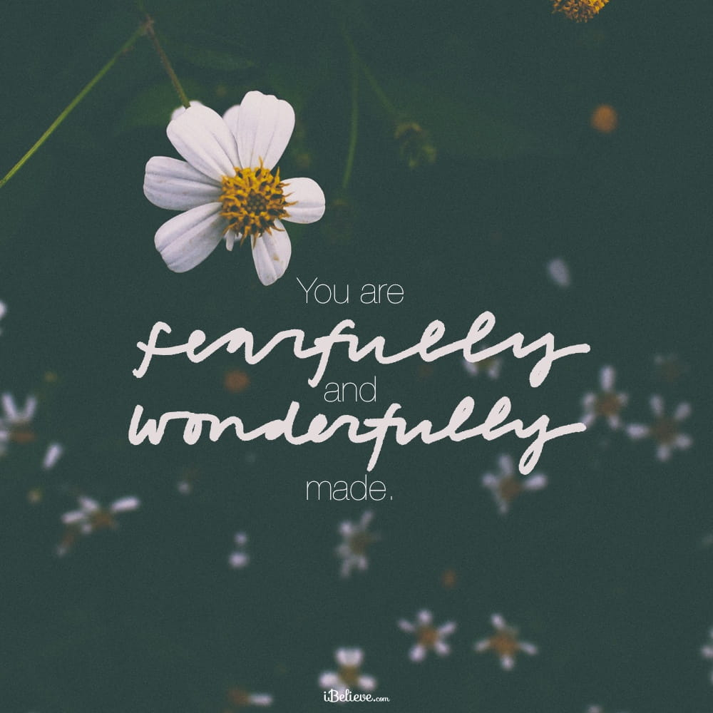 fearfully-wonderfully-made