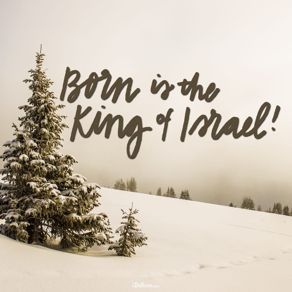born-is-the-king
