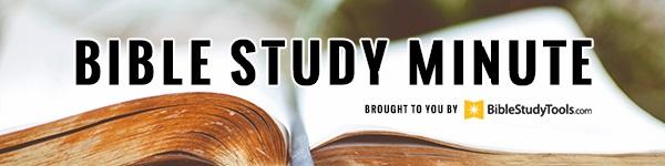 Bible Story of Job - Verses and Summary