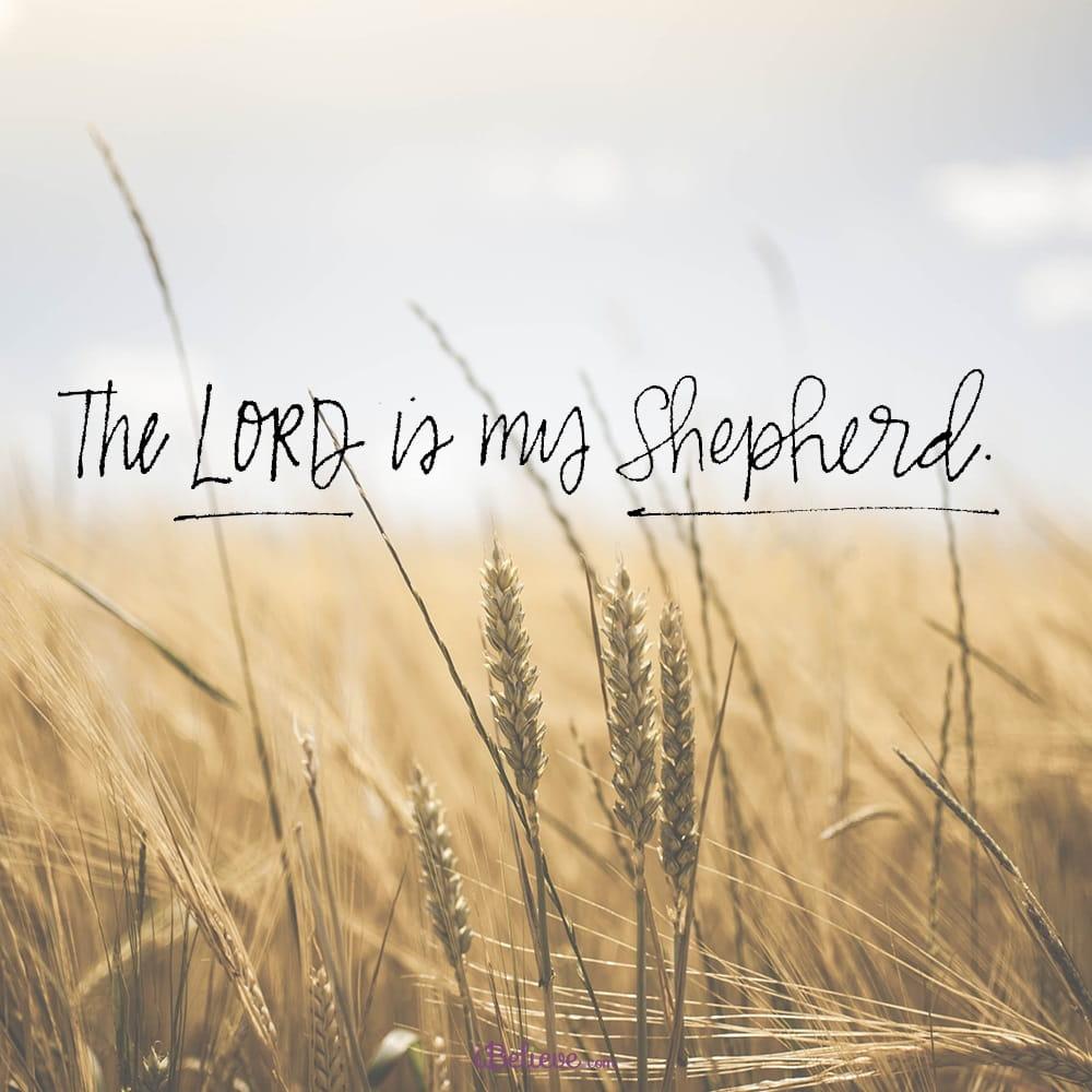 Unsplash The Lord Is My Shepherd Prayer Images