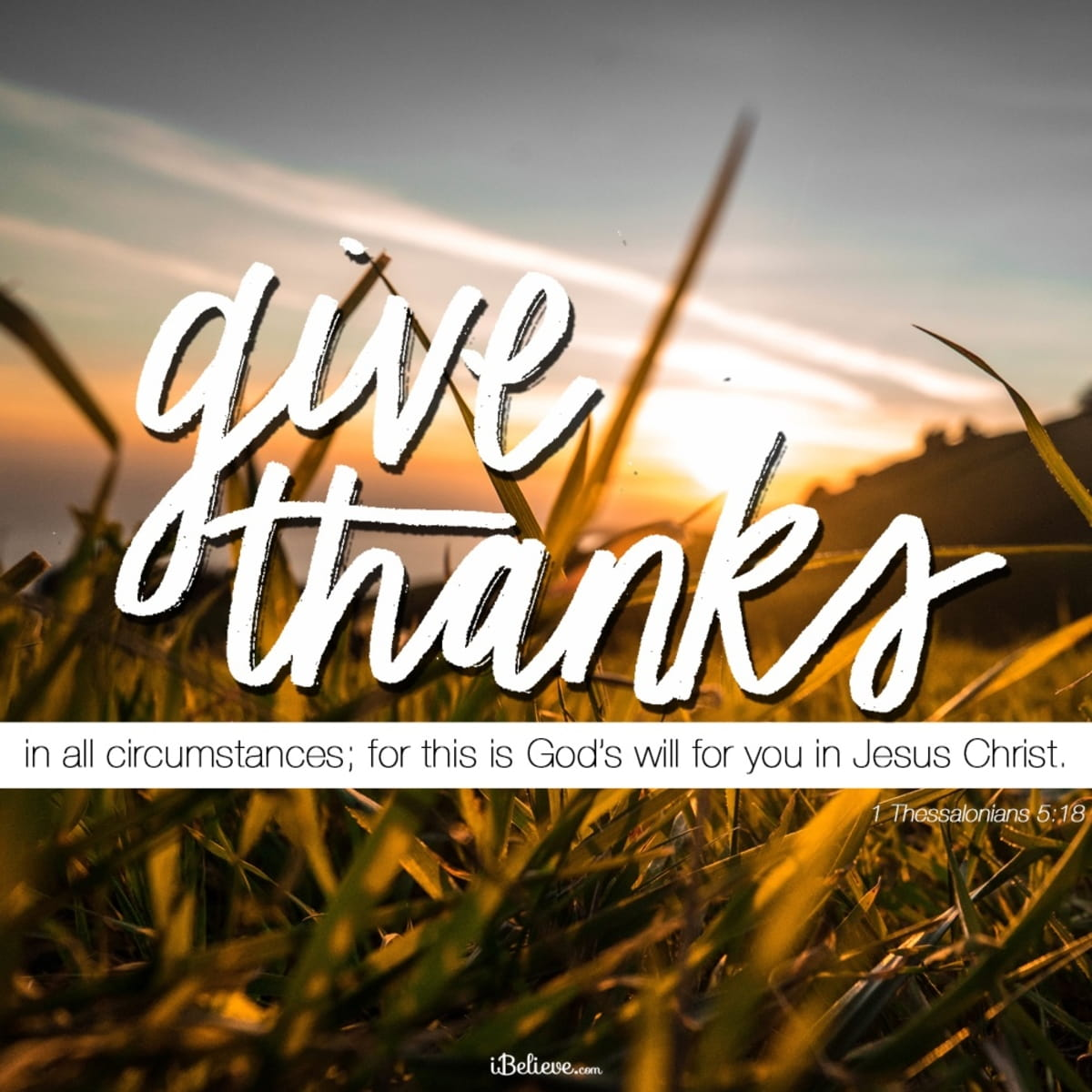 in all things give thanks and praise to god