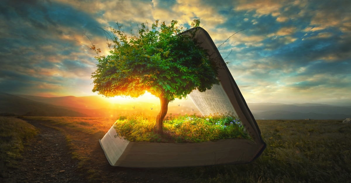 why should you read the book of genesis in the bible bible study