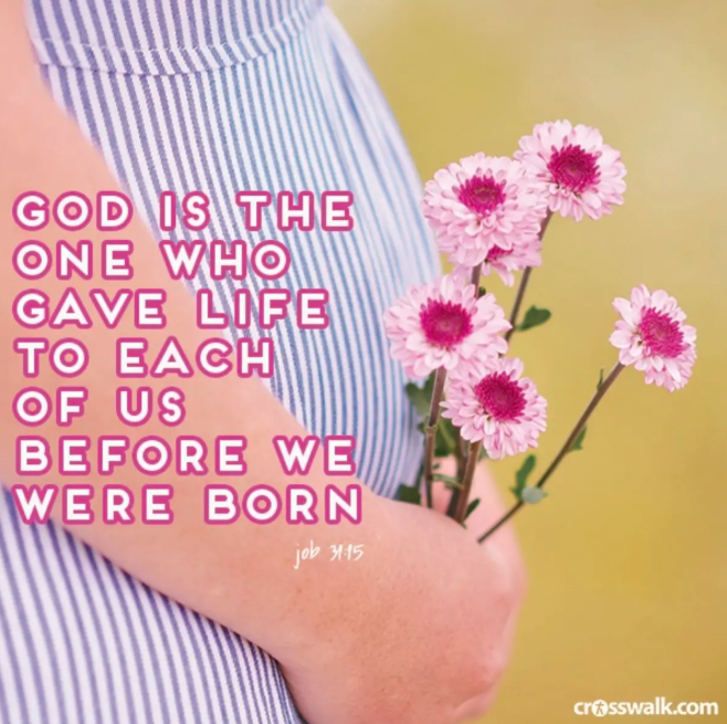 Job 31:5 Bible verse image designed by Rachel Dawson, unborn children
