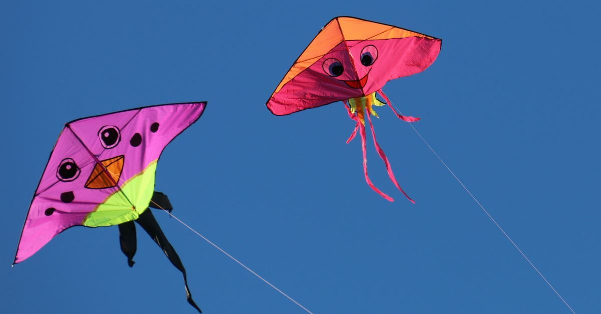Fun & Wonderful Kites!