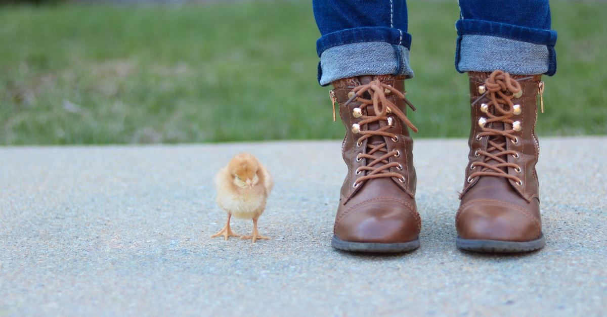 The Weak Duck: A Single Mom's Easter Lesson