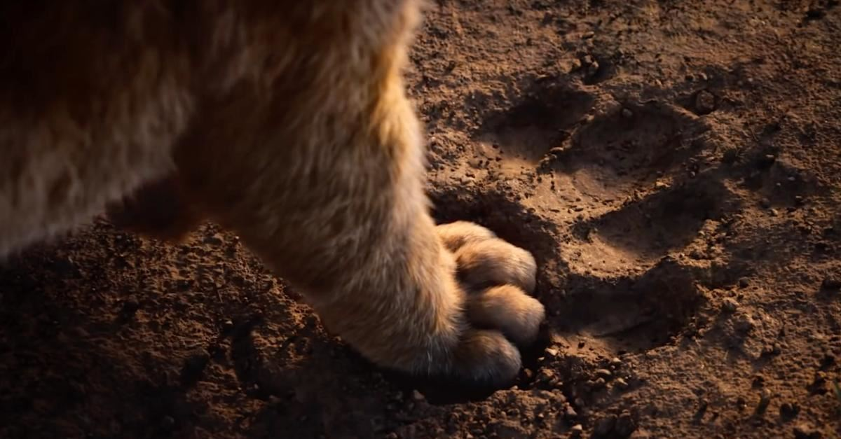 """6. """"You have forgotten who you are and so forgotten me."""" -Mufasa"""