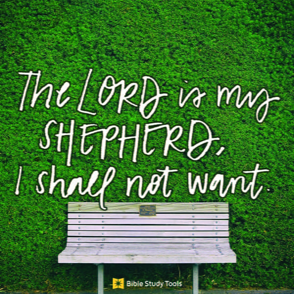 The Lord Is The Shepherd And We Are The Sheep Bible Study Minute