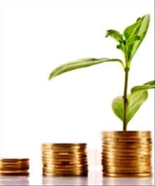 The Essentials of Investing