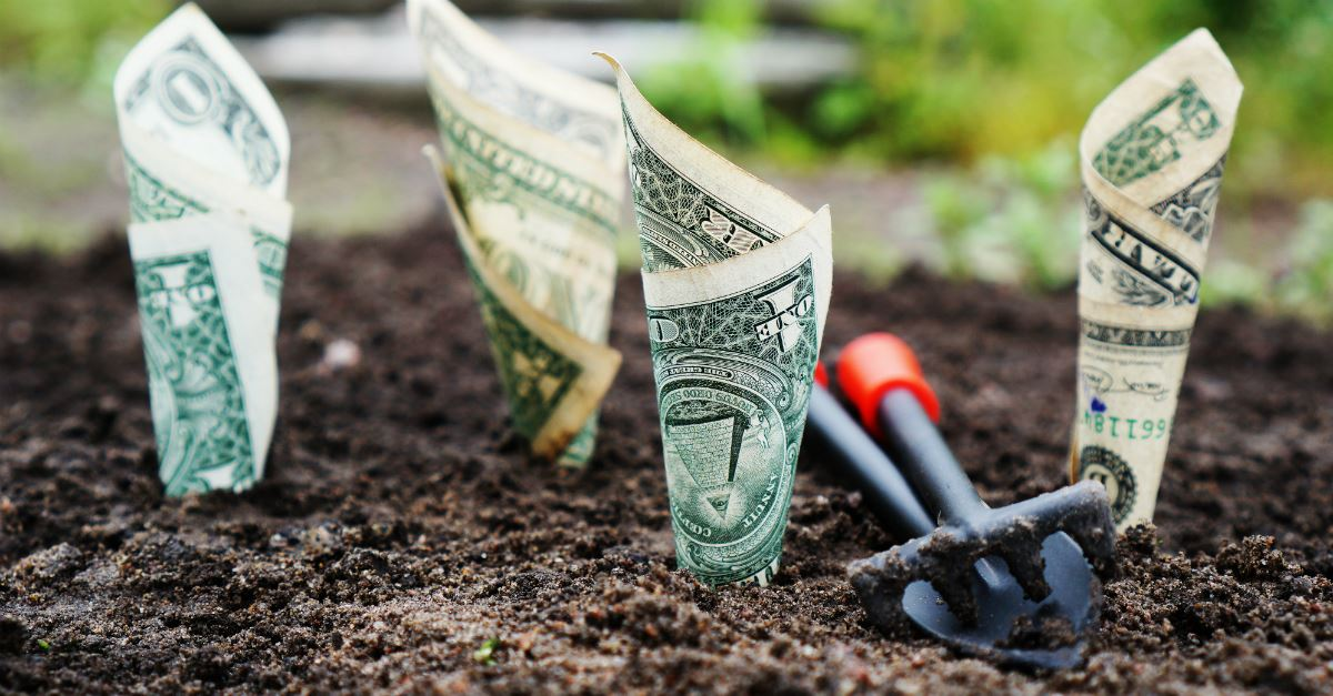 closeup of dirt in garden, with rolled dollar bills stuck in dirt as if growing, gardening spade nearby