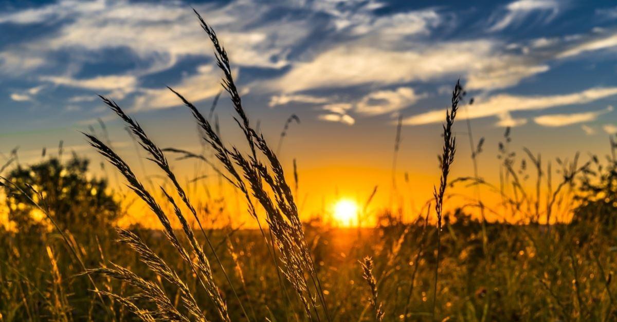 A Wednesday Prayer to Help Your Spirit Rest in God