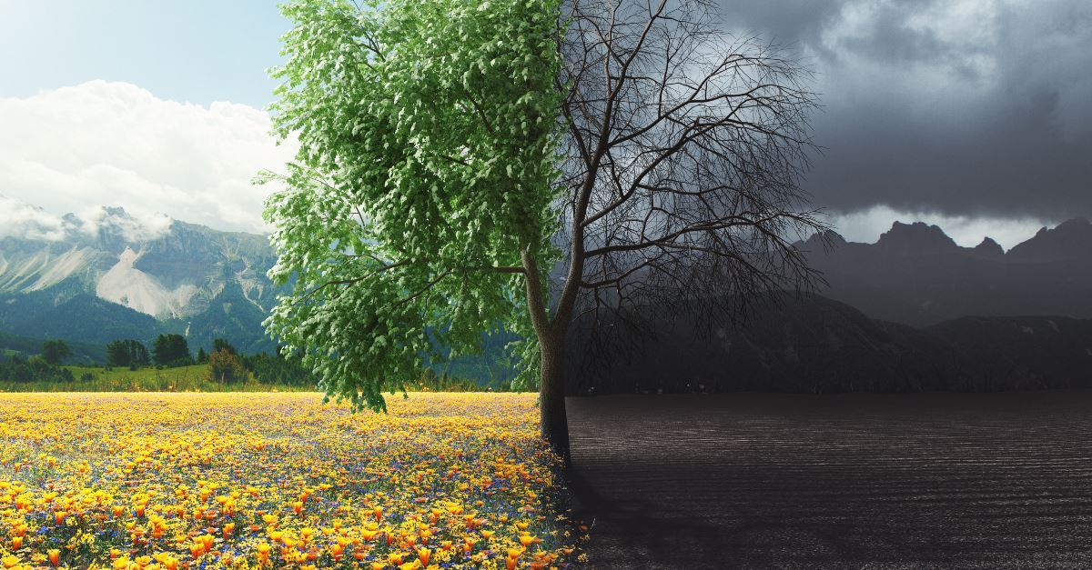 Does the Bible Address Climate Change?