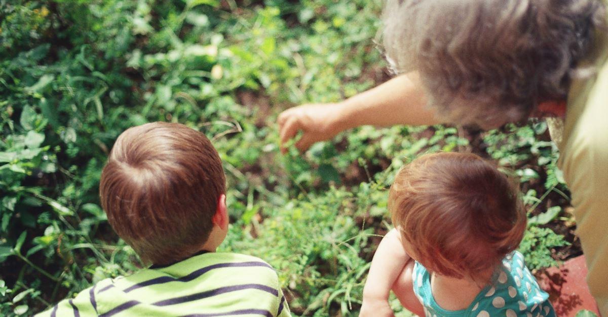 Confessions of a Homeschooling Grandma