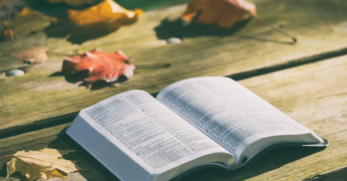 5 Simple Steps for Studying the Bible Effectively - Bible Study