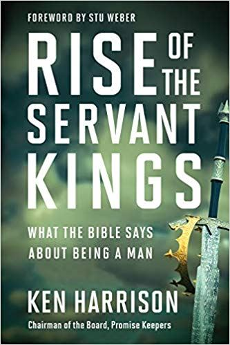 Rise of the Servant Kings book cover