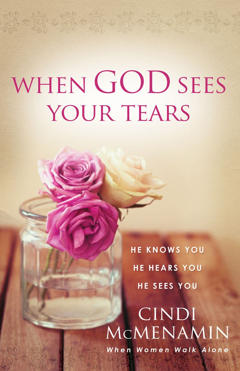 cover of book When God Sees by Cindi McMenamin