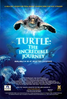 Born This Way - <i>Turtle: The Incredible Journey</i>