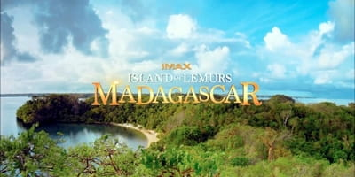<i>Island of Lemurs: Madagascar</i> is 40 Minutes of Wide-Eyed Wonder