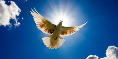 The Double Blessings of Pentecost