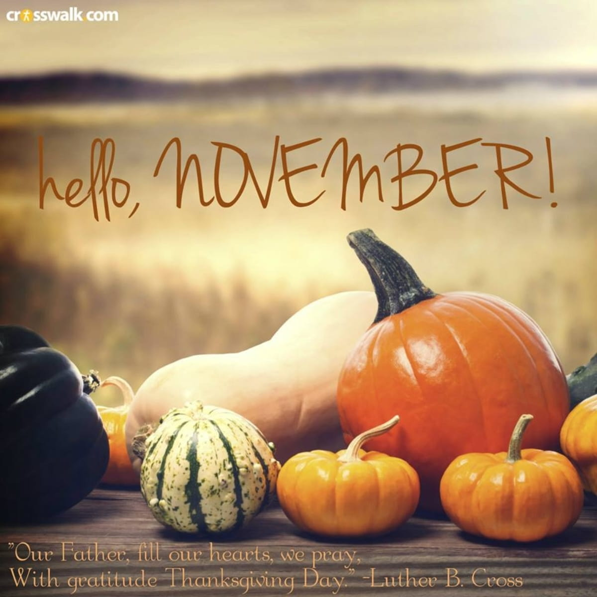 hello november inspirations