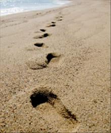Crosswalk's Top 12 Spiritual Life Features for 2011