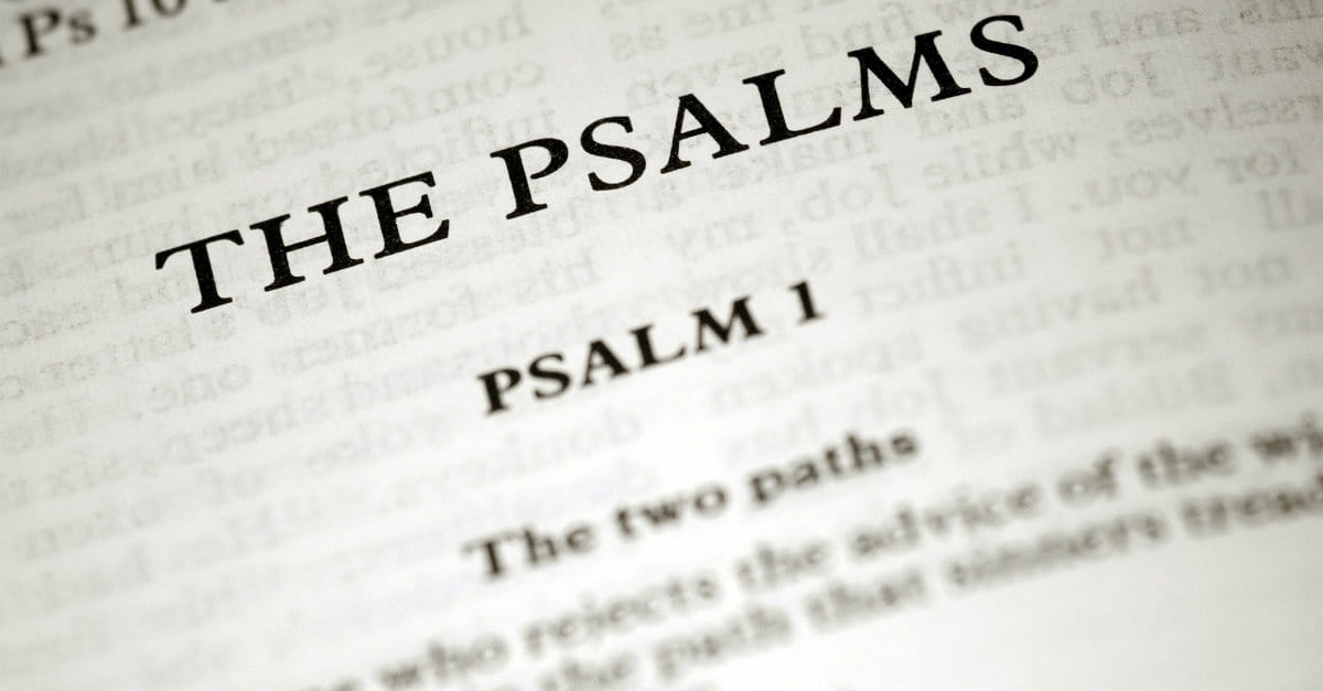 5. Biblical Meditation Improves Our Spiritual Health (Psalm 1:3)
