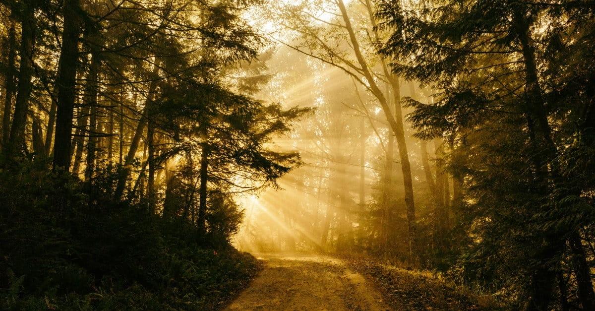 Prayer: Not a Destination but a Path