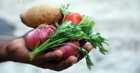 3. Daniel was a vegetarian teetotaler (Daniel 1:12).